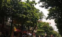 Bán nhà mặt phố Ngọc Lâm, 50m giá 12,6 tỷ