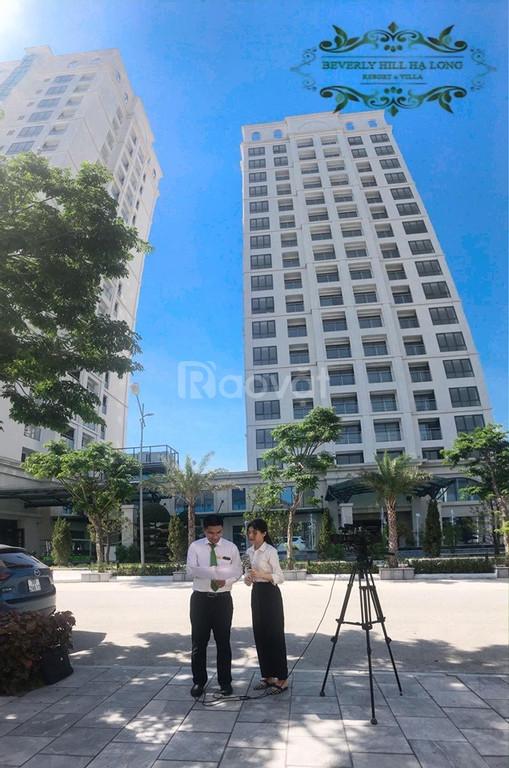 Đàu tư căn hộ Beverly Hills sổ đỏ lâu dài thành phố Hạ Long (ảnh 2)