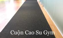 Thảm lót sàn gym, fitness, yoga