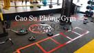 Thảm lót sàn gym, fitness, yoga (ảnh 4)