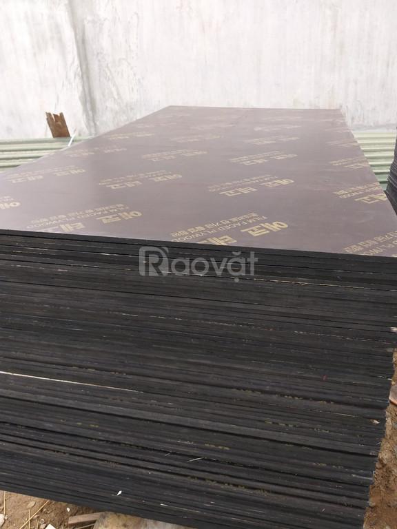 Ván ép phủ phim thanh lý 230k- Bắc Giang