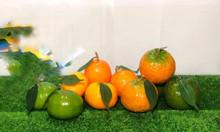 Trái cây giả, trái cây nhựa trang trí