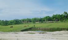 Sở hữu ngay lô đất dự án view sông Cổ Cò chỉ với 15tr/m2
