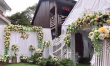 Trang trí backdrop cho đám cưới