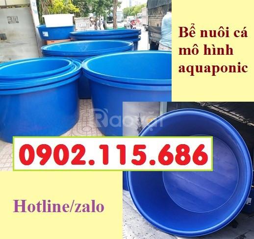 Bồn nhựa tròn nuôi cá, bể nhựa nuôi cá hình tròn, bồn nhựa tròn