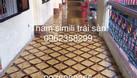 Thảm trải sàn simili  (ảnh 7)