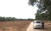 Chính chủ bán đất gần sân bay Long Thành