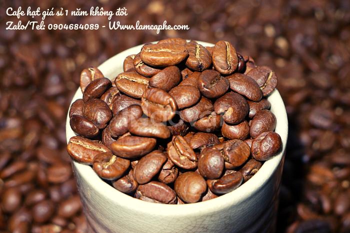 Cà phê hạt tại Hải Phòng cho đối tác phân phối giá sỉ 1 năm