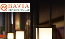 Đèn trụ cổng BAVIA ML-SVT006