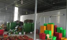 Nhận lắp đặt kho lạnh trữ thanh long tại Long An và Bình Thuận