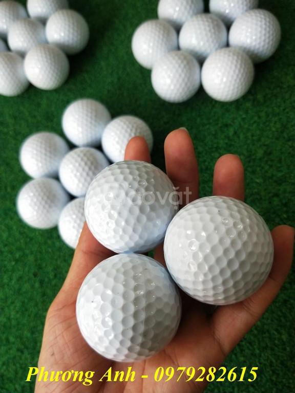 Banh tập golf (bóng tập golf) giá rẻ