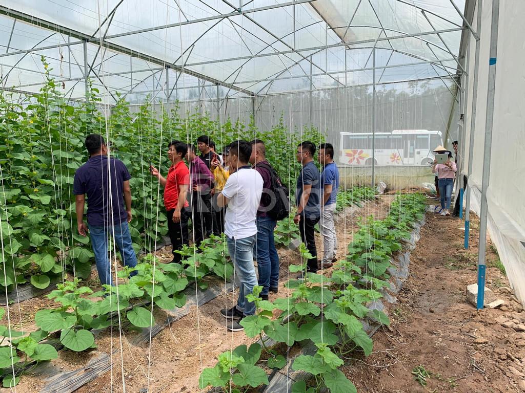 Đất nông trại Hồng Thái có sổ hồng riêng 5987m2