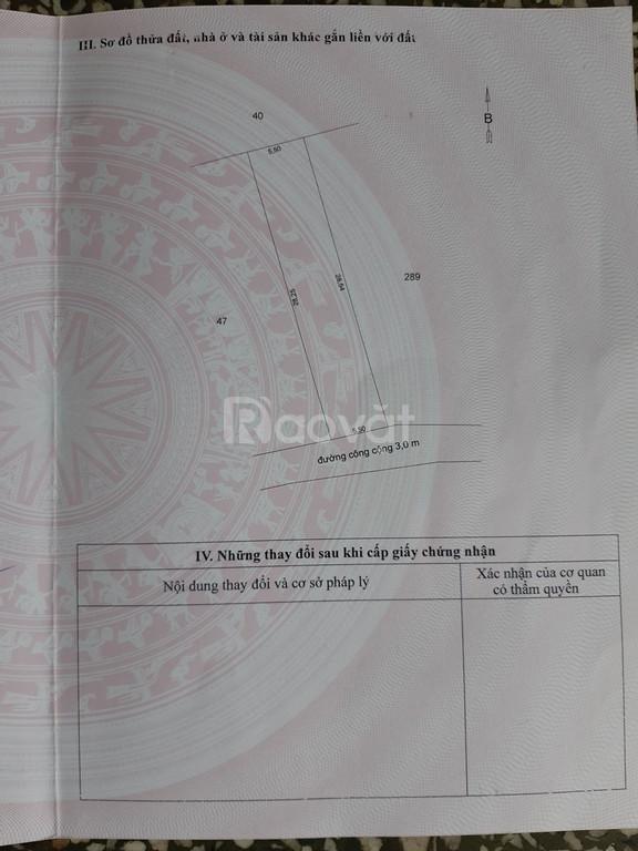 Bán đất hẻm ô tô Đạo Thạnh, Mỹ Tho, Tiền Giang