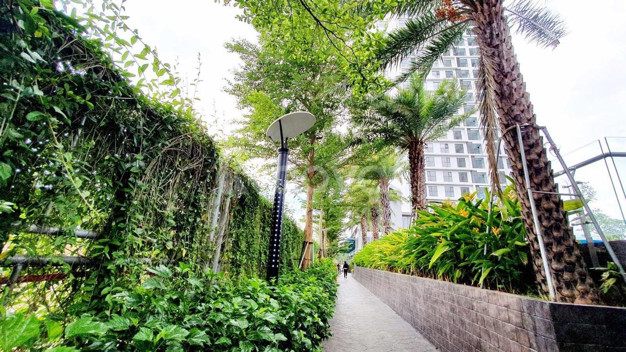 Mỹ Đình Pearl 5 căn ngoại giao chỉ 1,3 tỷ nhận nhà liền tay