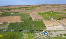 Đất vườn giá rẻ Bình Thuận