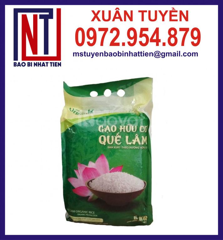 Bao bì gạo, túi gạo 5kg, túi gạo in ống đồng