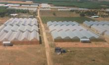 Bán 10 nghìn m2 đất giá 684 triệu có sổ đỏ công chứng ngay