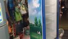 Tủ mát Sanaky 300 lít, hàng zin, đẹp, 4 ngăn đựng (ảnh 3)