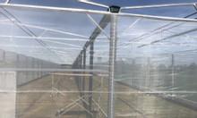 Lưới chắn côn trùng Politiv, lưới chống côn trùng Bình Minh