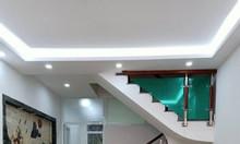 Bán nhà đẹp hiện đại 52m2 nội thất gỗ sịn phố Vũ Thạch, giá 7.3 tỷ