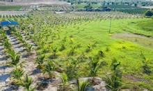 Tìm chủ mới cho lô đất Bình Thuận, giá yêu thương, fix