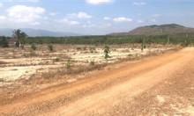 Bán 8000m2 đất gần biễn giá 520 triệu có sổ đỏ công chứng ngay