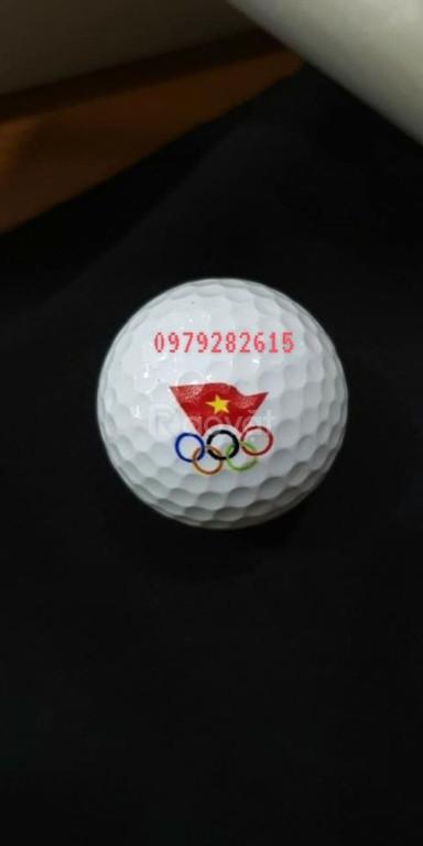 Bóng golf , in logo bóng golf ( banh golf )