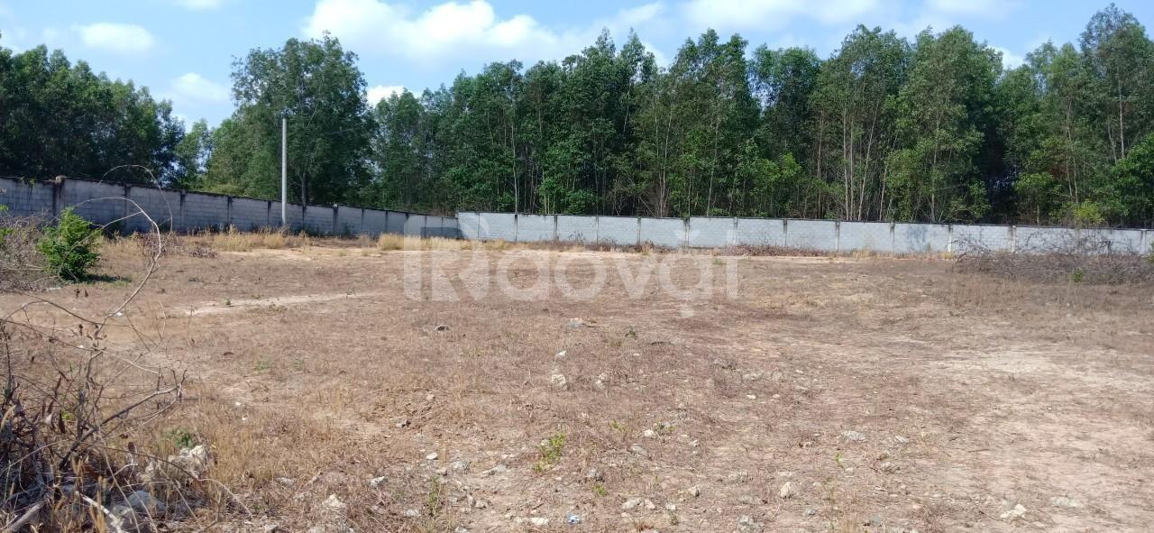 Bán đất làm kho, xưởng tại Phước Bình, 3891m2, SHR