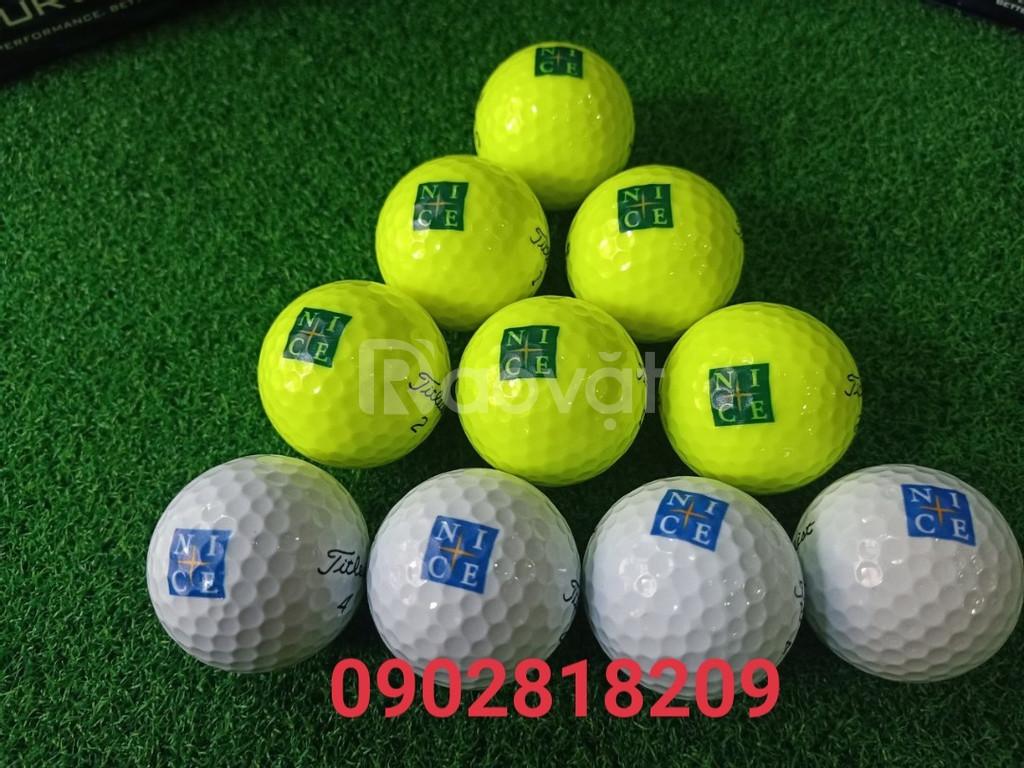 Dịch vụ in logo lên (bóng) banh golf lấy ngay giá rẻ