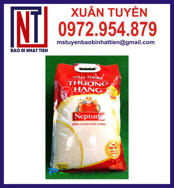 Cung cấp túi đựng gạo 5kg đục quai gắn nhựa