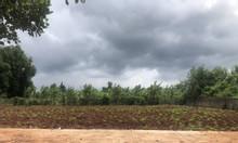 Bán đất quy hoạch KDC Hòa Long, tp Bà Rịa – sổ riêng, đất đẹp, giá tốt