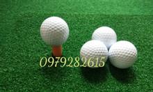 Tee golf,bóng tập golf