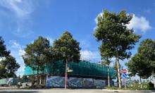 18 triệu/m2 thổ cư trong khu đại đô thị ĐBSCL