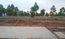 Phân khu đắc địa của dự án Stella Mega City