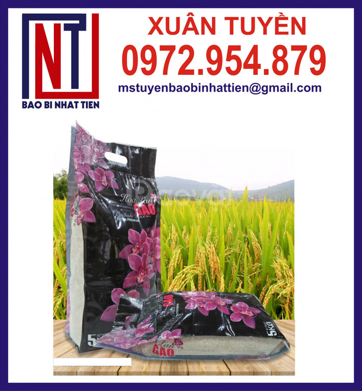 Túi đựng gạo 2kg, túi đựng gạo 5kg