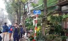 Mặt phố Hoàng Hoa Thám, 50m2, mặt tiền 4m, Mặt phố kinh doanh giá 10 tỷ (TL)