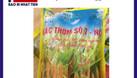 Chuyên in túi đựng lúa giống 1kg (ảnh 4)