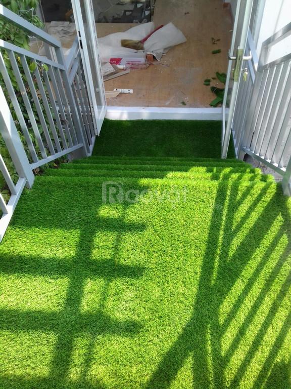 Thảm cỏ nhân tạo sân vườn 1cm giá rẻ (ảnh 5)