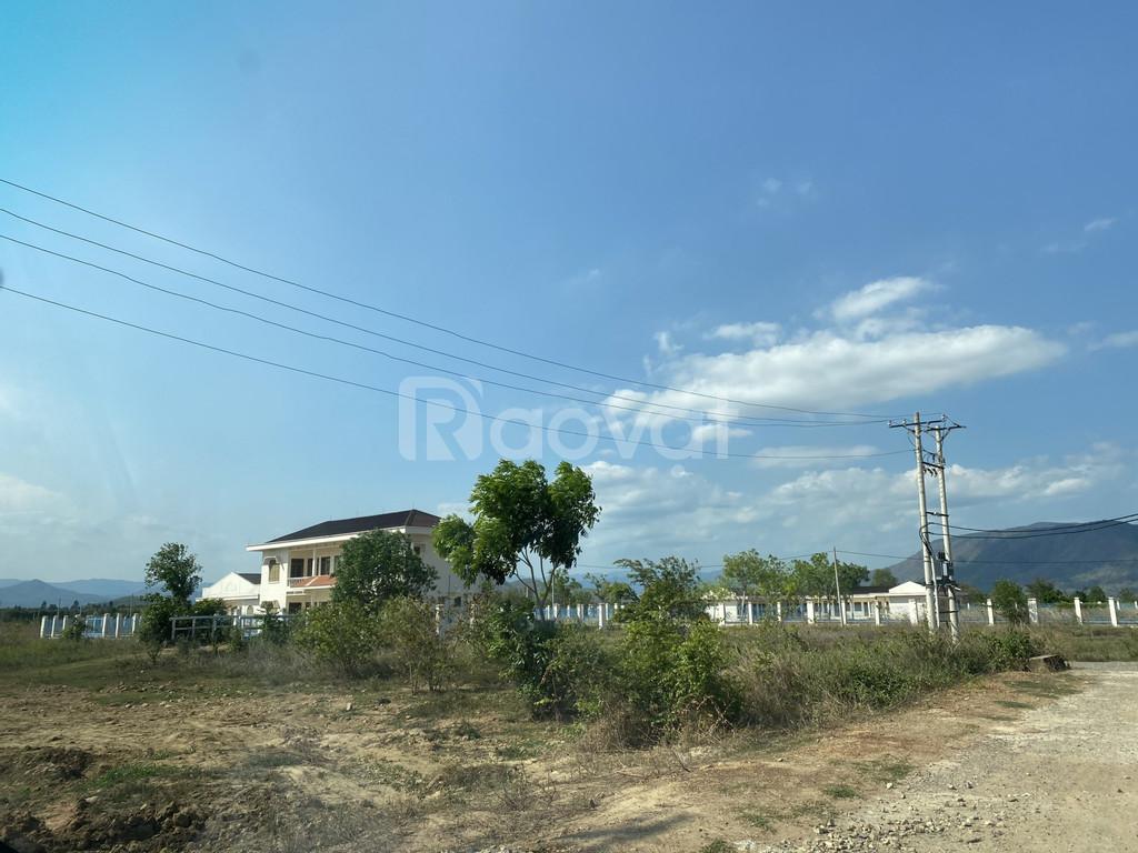Bán đất thổ cư Bình An, Bắc Bình, Bình Thuận chỉ 450tr/lô