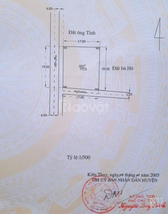 Bán đất tại Đường Đại Thắng, Dương Kinh, Hải Phòng diện tích 332m2