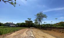 Nhà Hòa Lạc, nằm ngay lõi khu đô thị vệ tinh Hòa Lạc