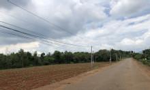 Bán 125m2 60tc MT nhựa Hắc Dịch, Phú Mỹ