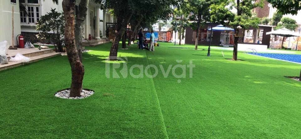 Thảm cỏ nhân tạo sân vườn 1cm giá rẻ (ảnh 1)