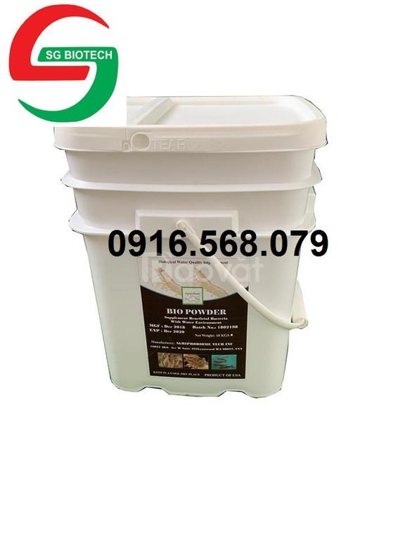 Bio powder- men vi sinh xử lý nước và đáy ao (ảnh 1)