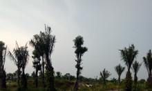 Bán ngay hai lô đất liền kề tại thị trấn Bần Yên Nhân, tỉnh Hưng Yên