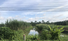 Chính chủ bán đất đẹp xã Trường Long, Huyện Phong Điền, giá tốt