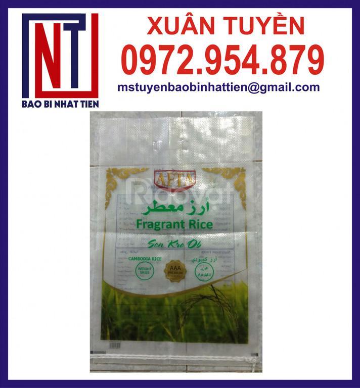 Túi đựng gạo 5kg, túi gạo PA