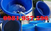 Bể nhựa dung tích lớn nuôi cá, bể nhựa nuôi cá ngoài trời