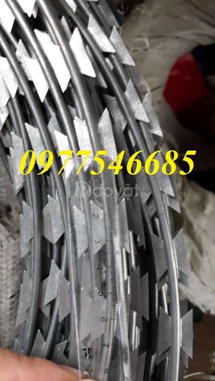 Chuyên dây thép gai hình dao sỉ lẻ tại Hà Nội