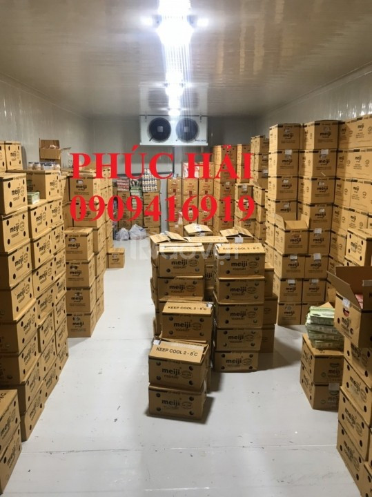 Chuyên cung cấp và lắp đặt kho lạnh uy tín chất lượng